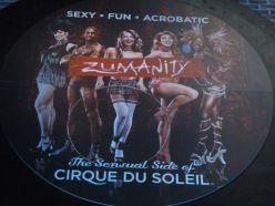 Cirque du Soleil show. vovet? ja kanskje.