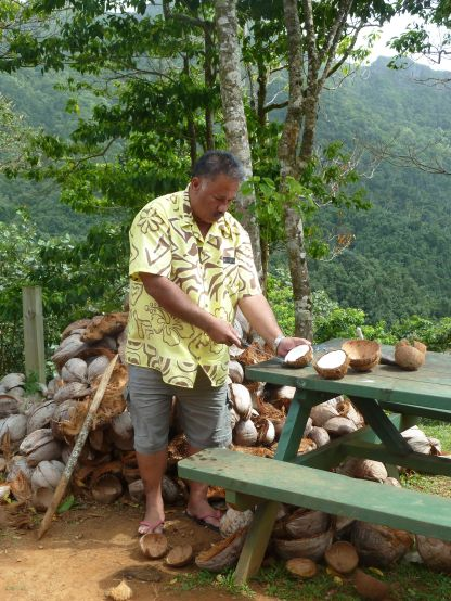 Kurs i kokos åpning