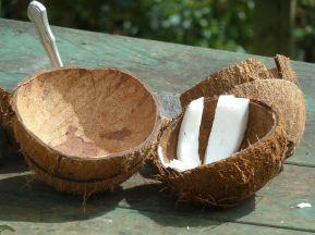 Kokos til alle mann